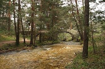 Puente de Navalacarreta (2 de mayo de 2015, Boca del Asno, Segovia) 06.JPG