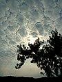 Puzzle od oblaka - panoramio.jpg