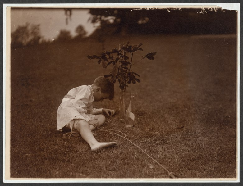 File:Quentin Roosevelt planting a tree LCCN2009633585.tif