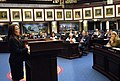 Rachel Burgin comments at the well on the House floor.jpg