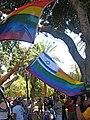 Rainbow-flag-israel.jpg
