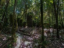 Ranomafana - burial site.jpg