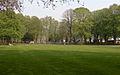 Rasen am Baldeneysee, Essen.jpg
