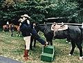 Reagan helping Nancy off her horse.jpg