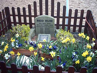 Red Rum - Red Rum's grave at Aintree