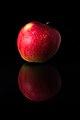 Reflection of an Apple, 1710131920, ako.jpg