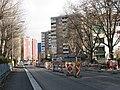 Reichenauer Strasse 1.jpg