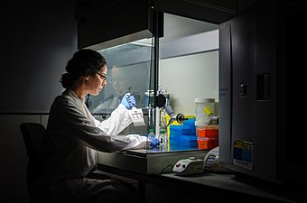 Researcher at work in her laboratory.jpg