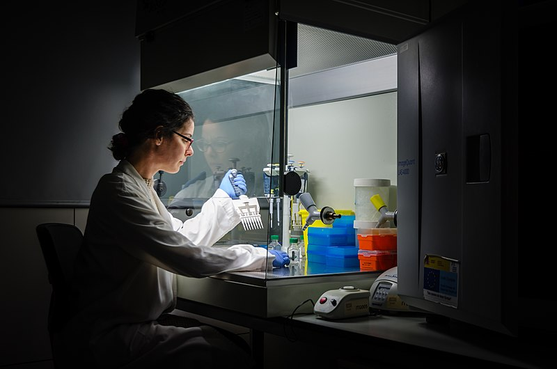 File:Researcher at work in her laboratory.jpg