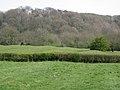 Ridge and furrow near King John's Lane - geograph.org.uk - 1833603.jpg
