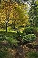 Rill at Batsford Arboretum-geograph-4480479.jpg