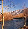 Riparian Lehigh River.jpg