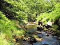 River Goyt - geograph.org.uk - 1375263.jpg
