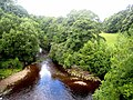 River West Allen - geograph.org.uk - 886864.jpg