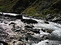River of Friendship.jpg