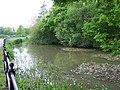Roadside duck pond near Cowesfield Green - geograph.org.uk - 413752.jpg