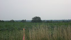 Roberts Mound from State Route 129.jpg