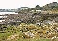 Rocky shoreline near Rockcliffe - geograph.org.uk - 1630634.jpg