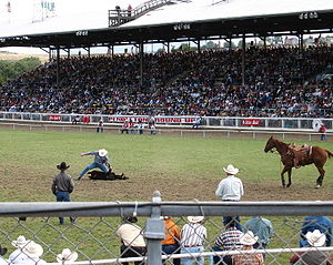 Pendleton Round-Up - Calf roping participant in 2004