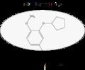 Rolipram highlighting the 3,4 dialkoxyphenyl moiety.png