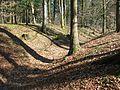 Rothenfels (Deining) (3).jpg