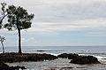 Round Efate trip 26 Nov. 2006 - coast near Epau - Flickr - PhillipC.jpg
