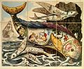 Royal Game of the Dolphin, 1821.jpg