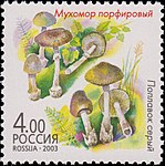Russia stamp 2003 № 879.jpg