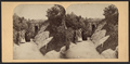 Rustic arch in the Ramble, from Robert N. Dennis collection of stereoscopic views.png