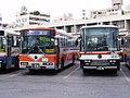 Ryukyu-Bus.jpg