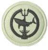 SANDF Qualification Attack Diver badge embossed.png