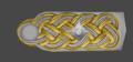 SS Gruppenführer (Variante).png