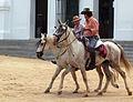 Saca de las Yeguas (14587430195).jpg