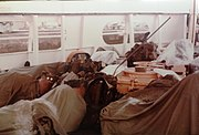 Sagebrush with Sleeping Marines