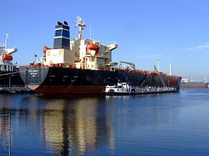 Salamis IMO 9165281 p1, Port of amsterdam, Holland 02-Nov-2008.jpg