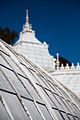 San Francisco Conservatory of Flowers-44.jpg