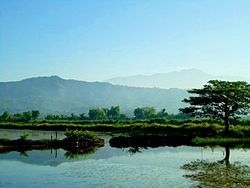 San Roque West fish ponds at Sitio Banaoang.jpg