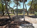 Sarasota FL Harding Circle HD St Armands Circle01.jpg