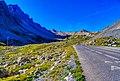 Savoie Col du Galibier Nord 39.jpg
