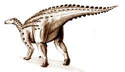 Dessin d'un scélidosaure