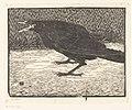 Schreeuwende kraai, RP-P-1921-1935.jpg