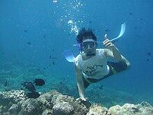 Snorkeling From Beach Tadrai Island Fiji Day Trip