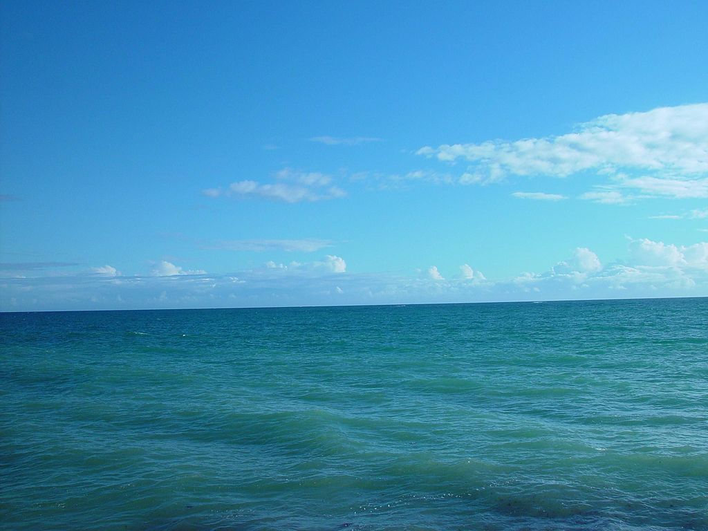 Ocean Blue Graphics West Palm Beach