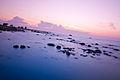 Seashore after sunset 7509 (6047022112).jpg