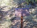 Secret Canyon Trail, Sedona, Arizona - panoramio (17).jpg