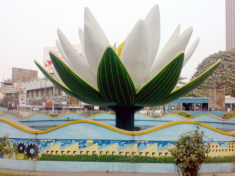 File:Shapla Chattar (Water lily).jpg