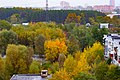 Shchyolkovo, Moscow Oblast, Russia - panoramio - Андрей Александрович… (3).jpg