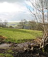 Sheep pasture near Colomendy - geograph.org.uk - 342918.jpg
