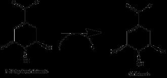 Shikimate dehydrogenase - The Shikimate Dehydrogenase Reaction
