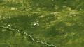 Siberiaweek30 - Green earth.png